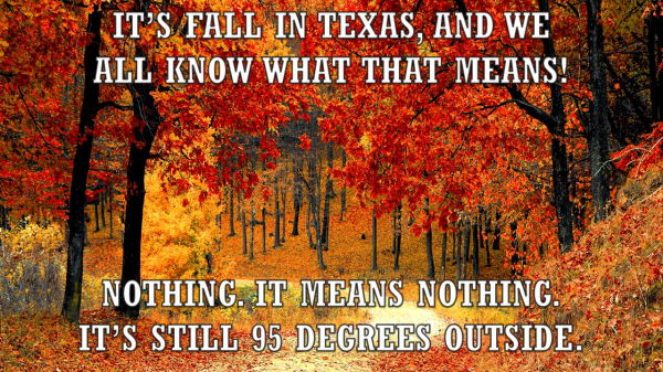 fall in texas.png