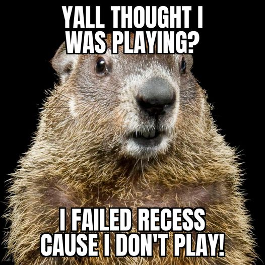 groundhog dont play.jpg